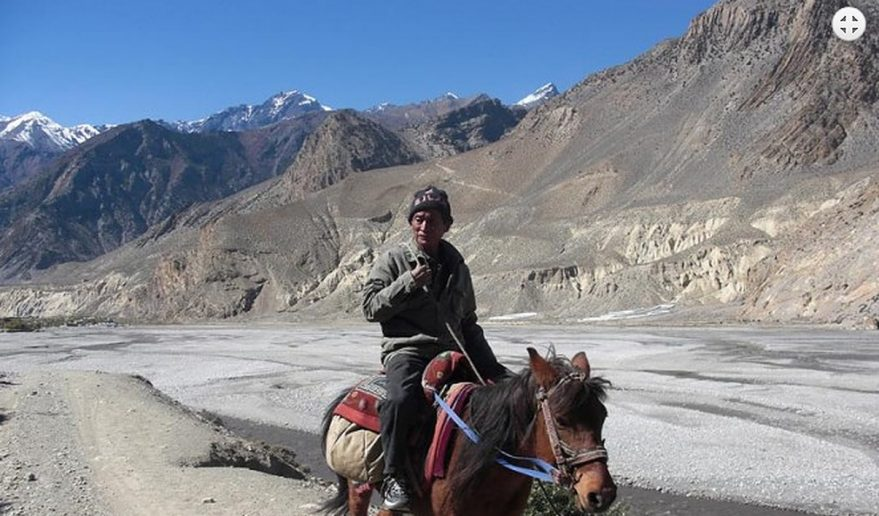 Mustang Helicopter Tour | A local riding horse at Upper Mustang