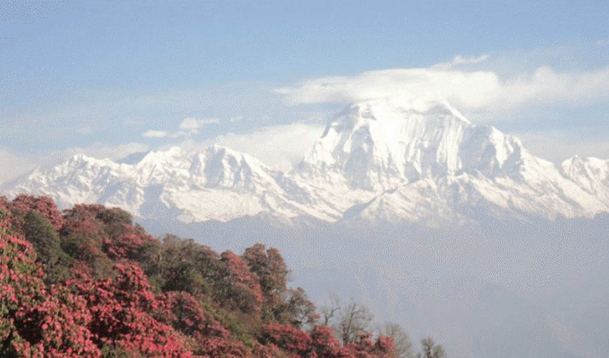 Annapurna Sanctuary Trek | Poon Hill Trek