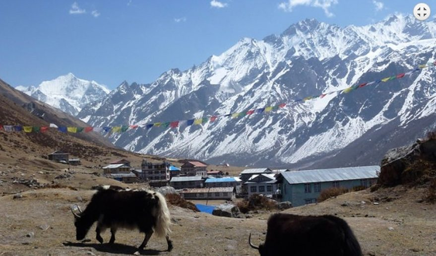 Langtang Valley Trek | Langtang Valley Trekking