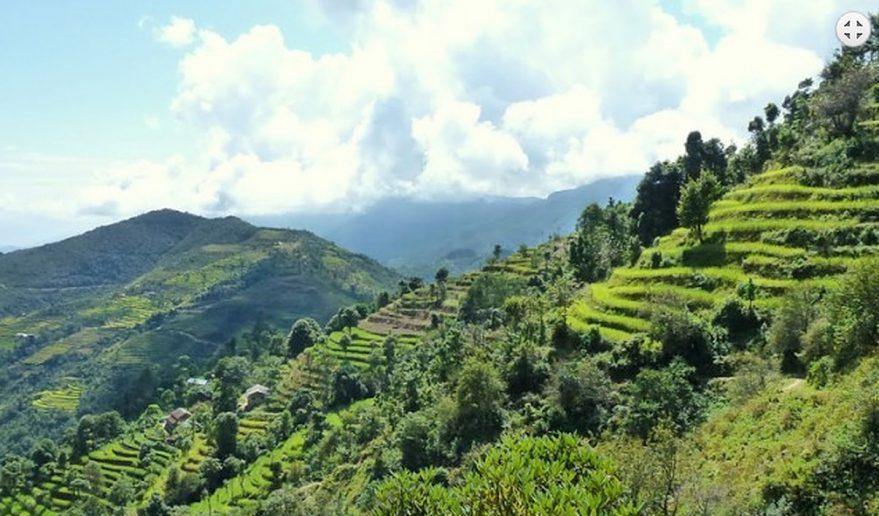 Langtang Helambu Trekking | Helambu trail