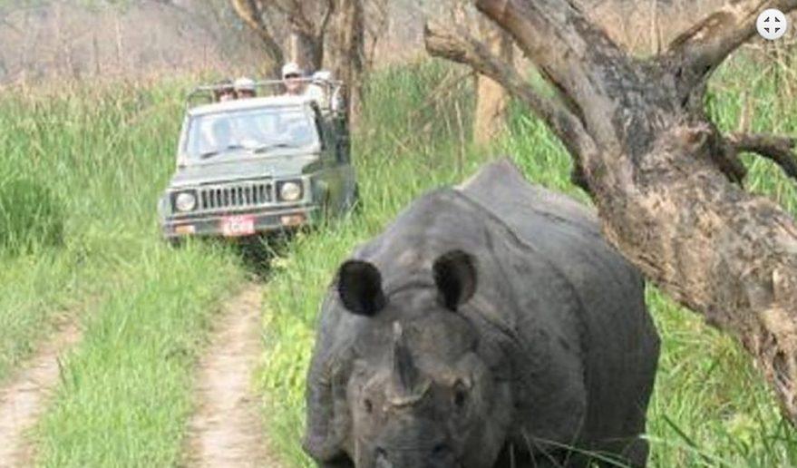 Bardia National Park | Jeep riding inside Bardia National Park.