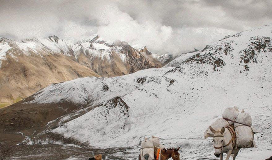 Nar Phu Valley Trek | Kangla Pass at 5306m