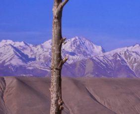 Mt. Kailash and Lhasa Tour via Simikot