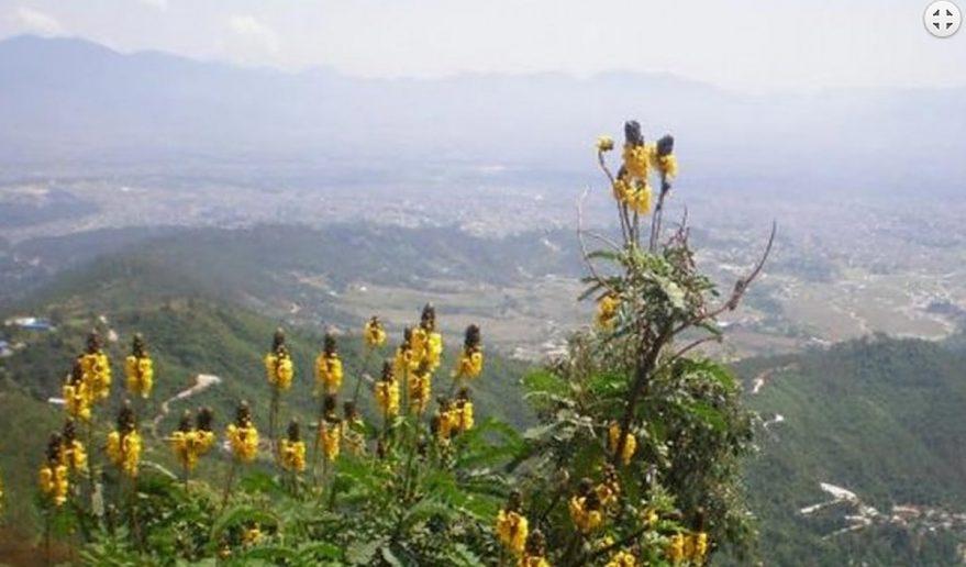 Nagarjun Hill Day Hike.