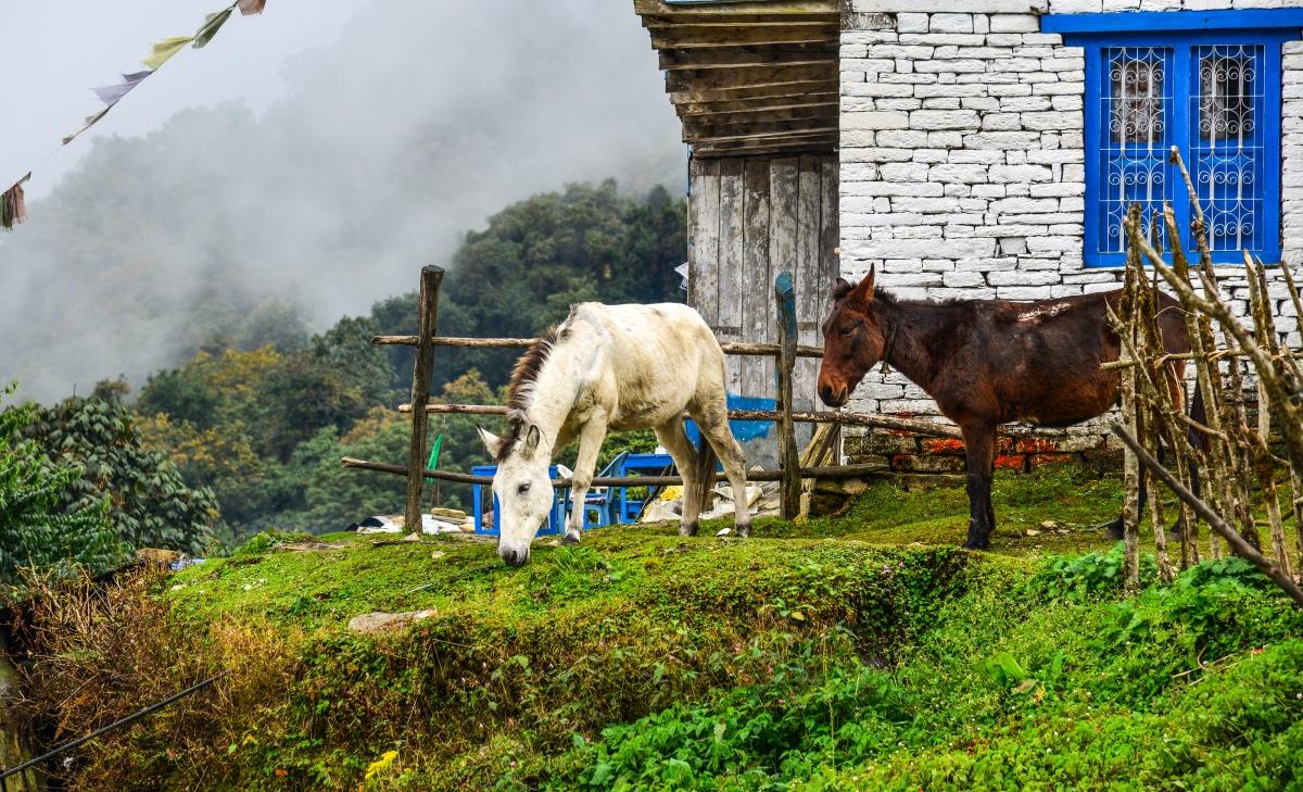 Less Crowded Treks in Nepal