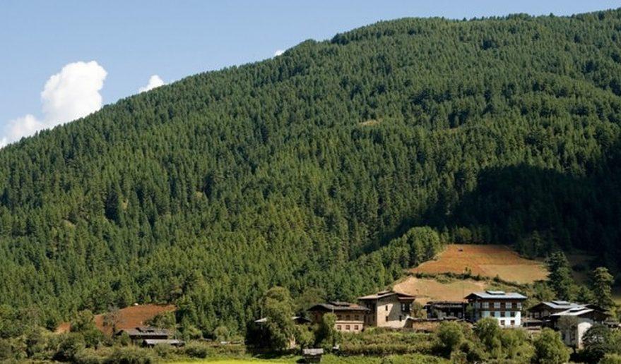 Picture captured Bumthang Owl Trek Bhutan.
