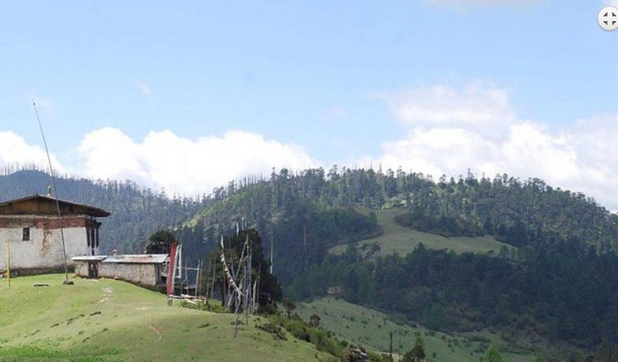 Picture captured during - Bumthang Owl Trek Bhutan.