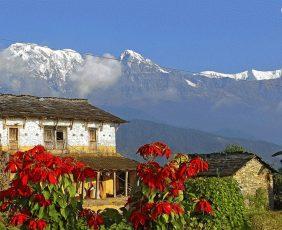 Ghorepani Poonhill Trek | Dhampus
