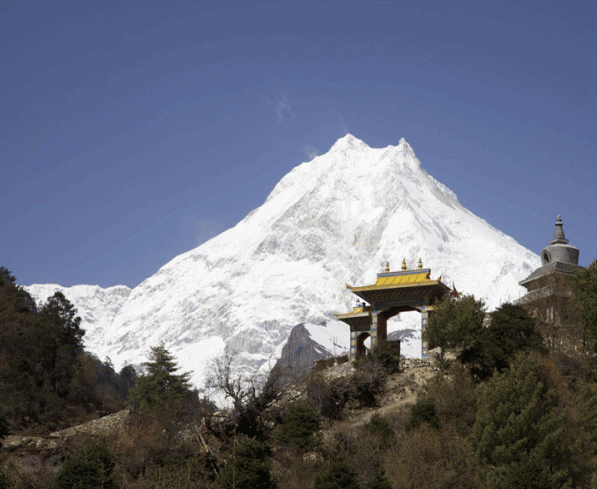 View of Mt. Manaslu from Lho | Manaslu Circuit Tsum Valley Trek