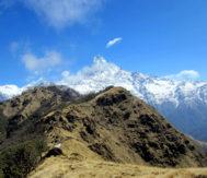 GOV OF NEPAL